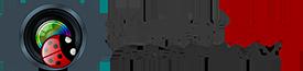 Shutterbug Academy